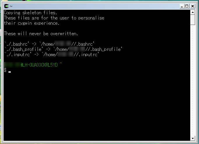 cygwin2.png